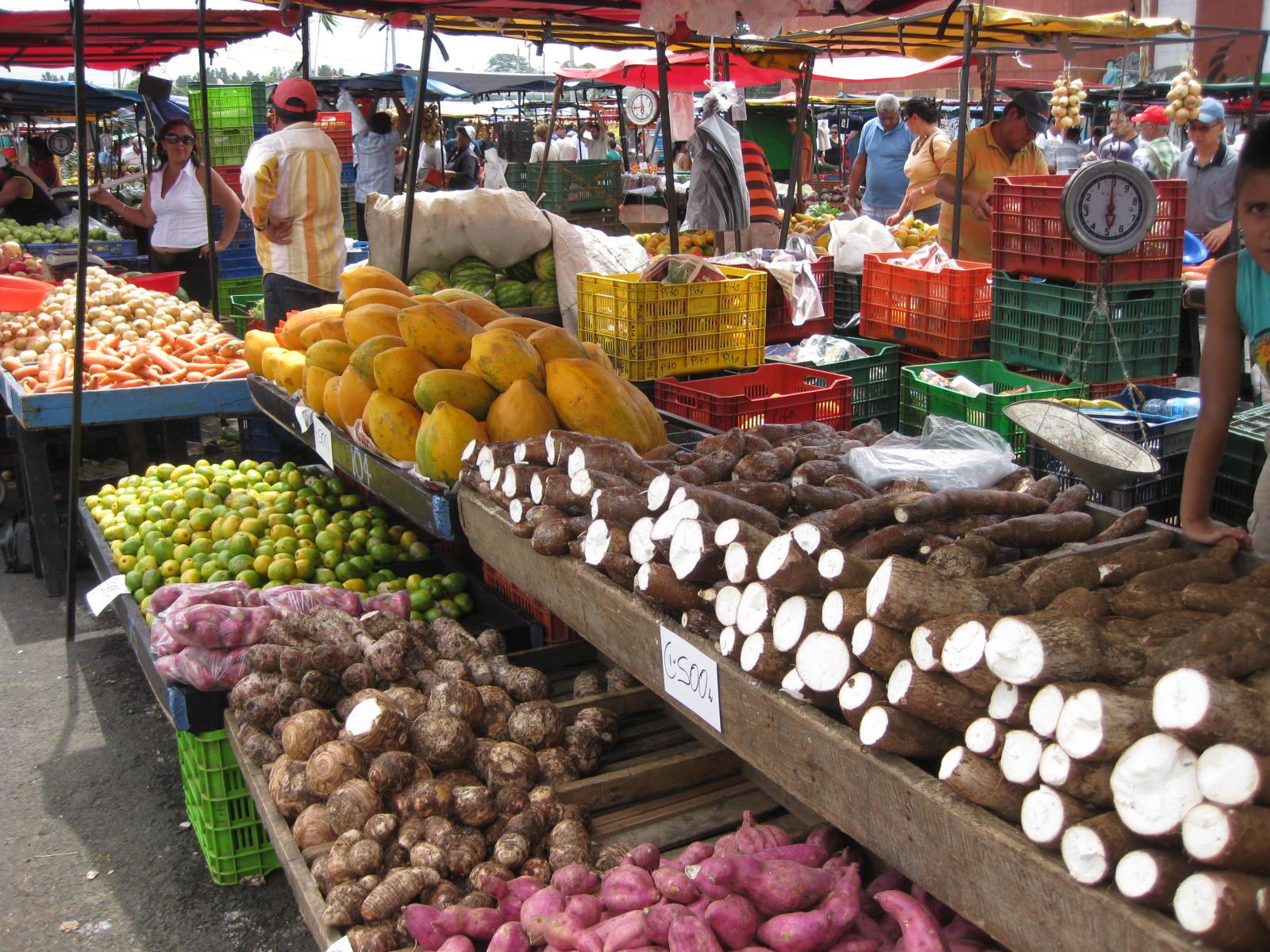 Papayas at Costa Rican Farmer's Market - Alldonemonkey.com
