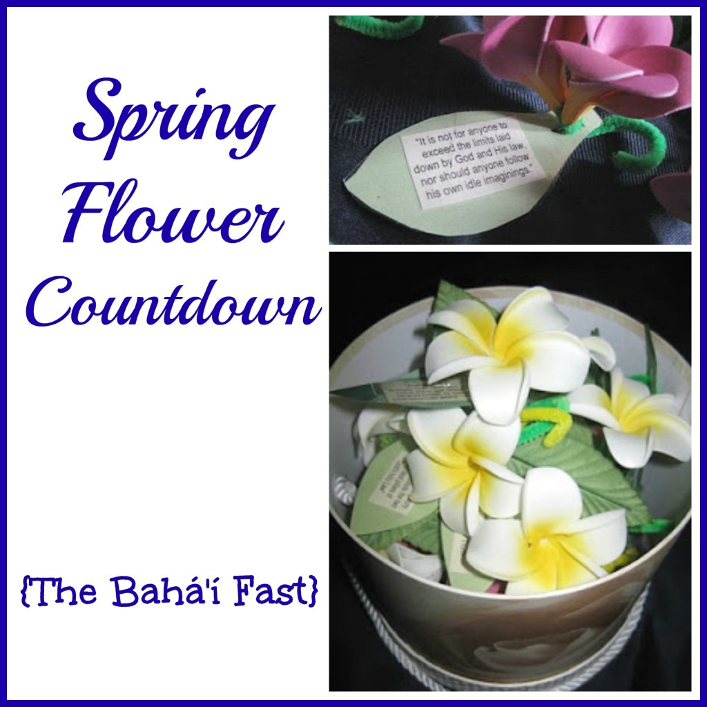 Spring Flower Countdown {The Baha'i Fast} - Chelsea Lee Smith on Alldonemonkey.com