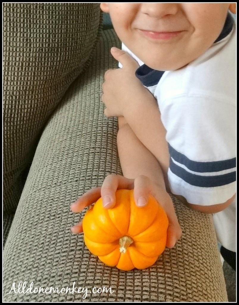 Runaway Pumpkin Halloween Experiment | Alldonemonkey.com