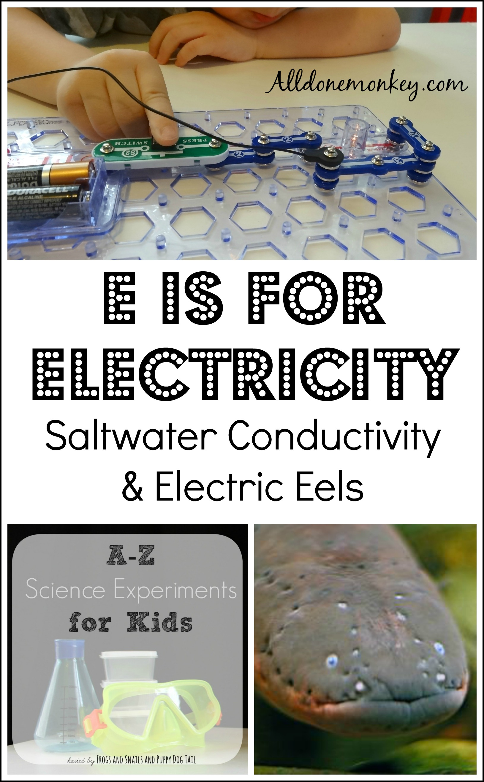 Conductivity Meters For Science Project : E is for electricity saltwater conductivity experiment