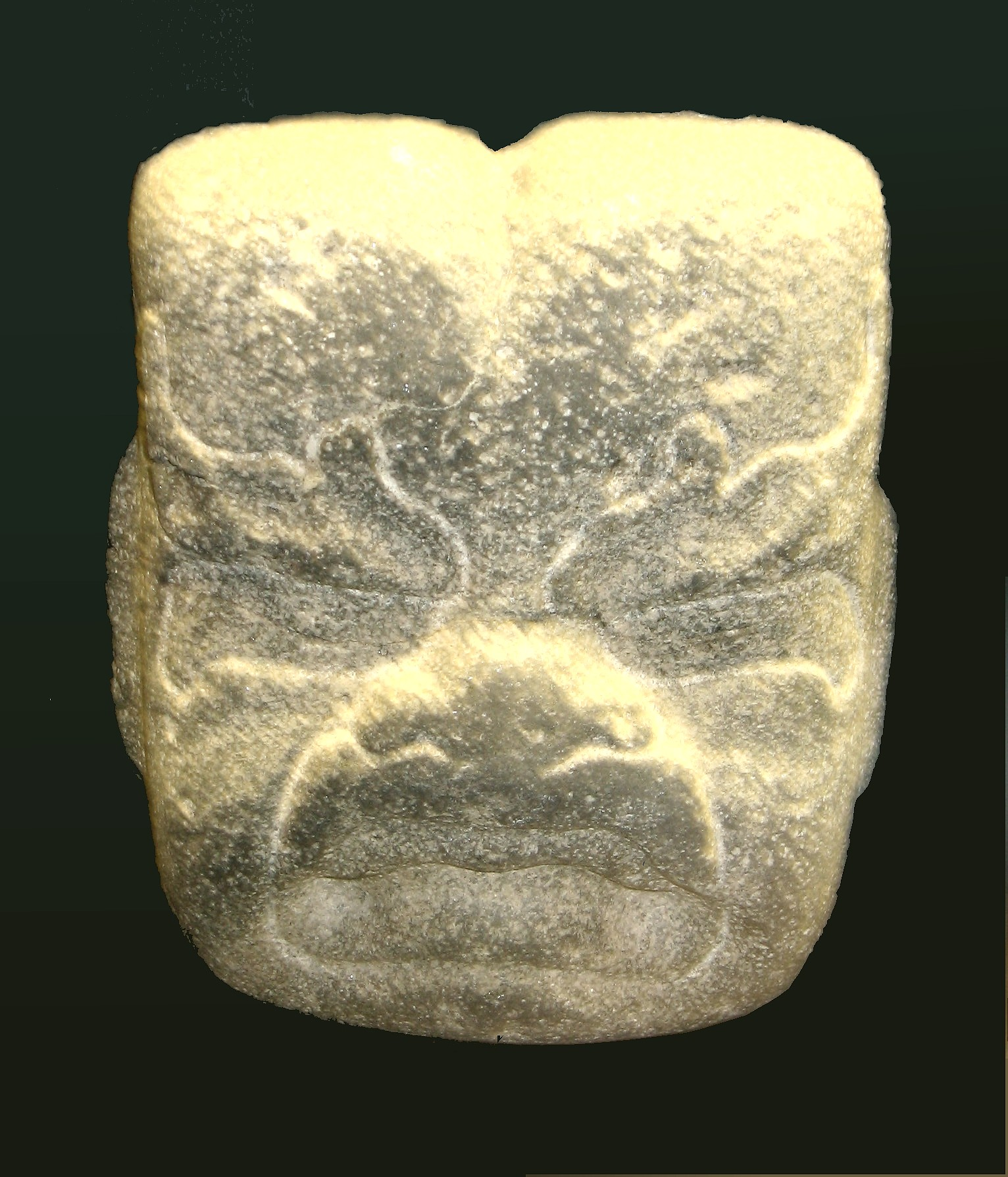 Olmec Stone Were Jaguar Face