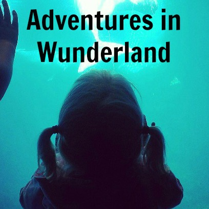 Adventures in Wunderland