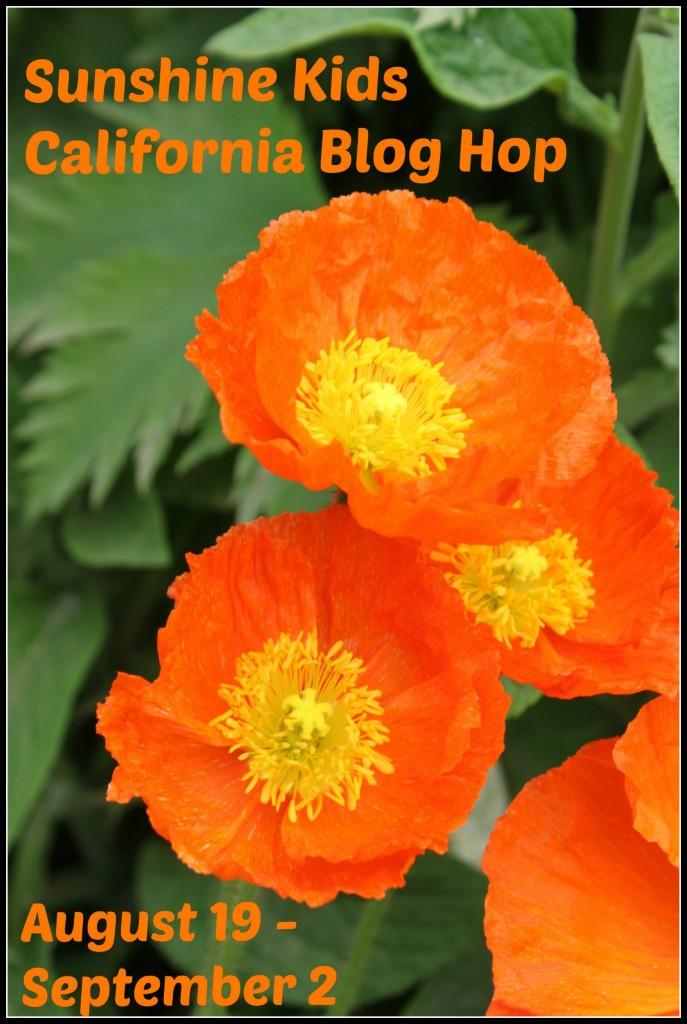 Sunshine Kids California Blog Hop