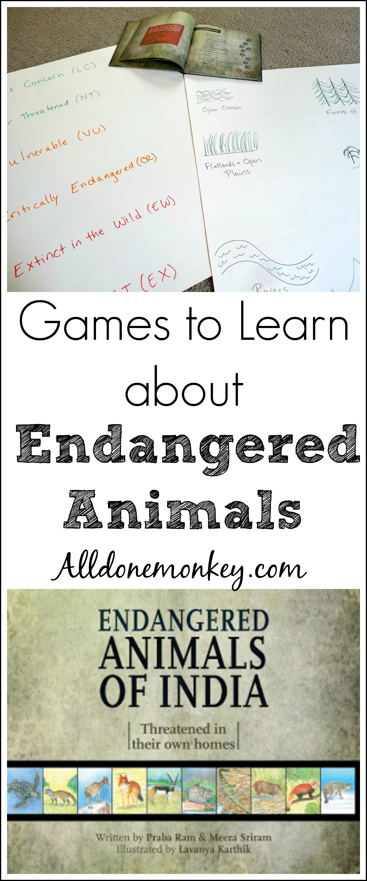 India: Games to Learn about Endangered Animals | Alldonemonkey.com